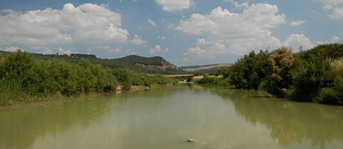 Oriented nature reserve of Mount Capodarso and Valle Imera